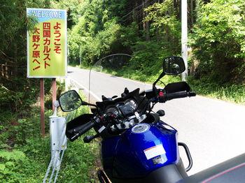 20110604160.JPG